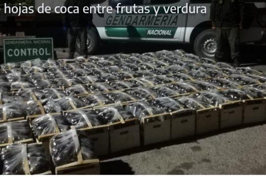 Ocultaban más de 590 kilos de hojas de coca entre frutas y verdura