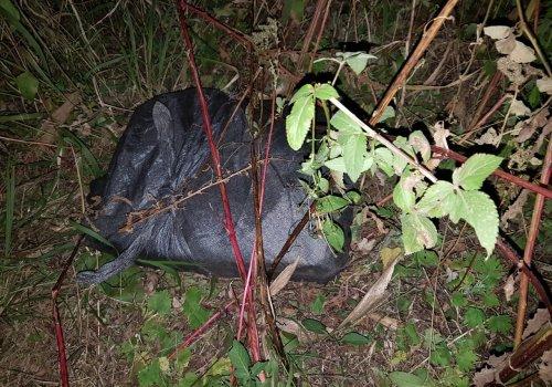 54 kilos de cocaína y allanamientos en Orán