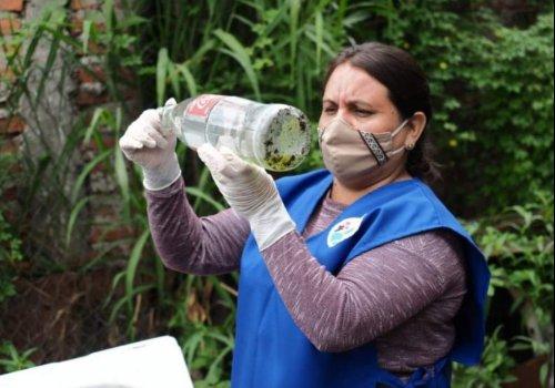 Los operativos de Dengue en Orán